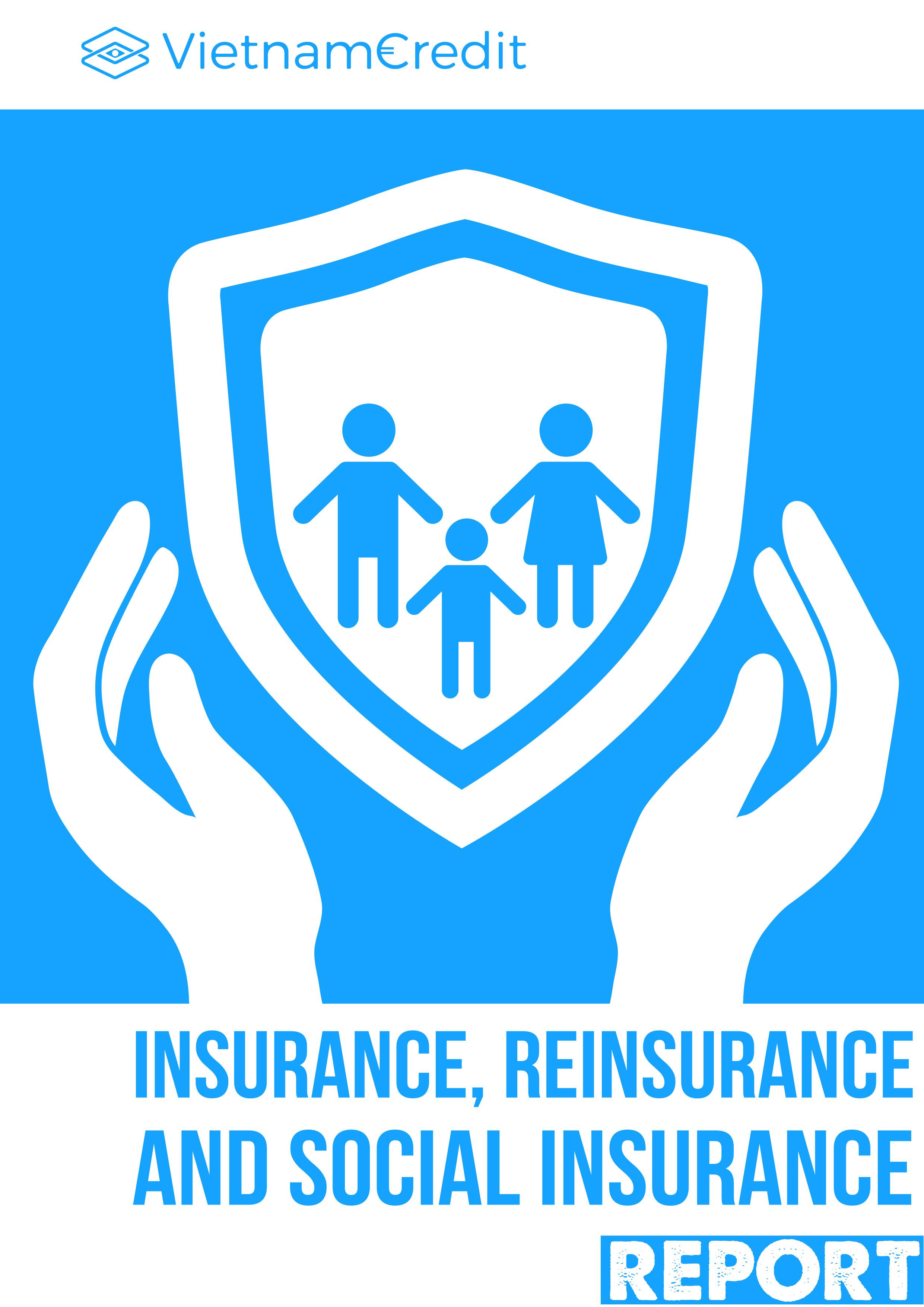 Vietnam Insurance, Reinsurance and Social Insurance Industry Report 2020