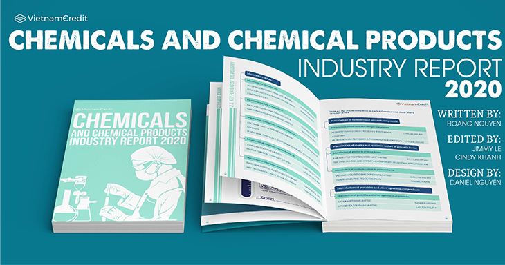 Overview of Vietnam's chemicals and chemical products industry