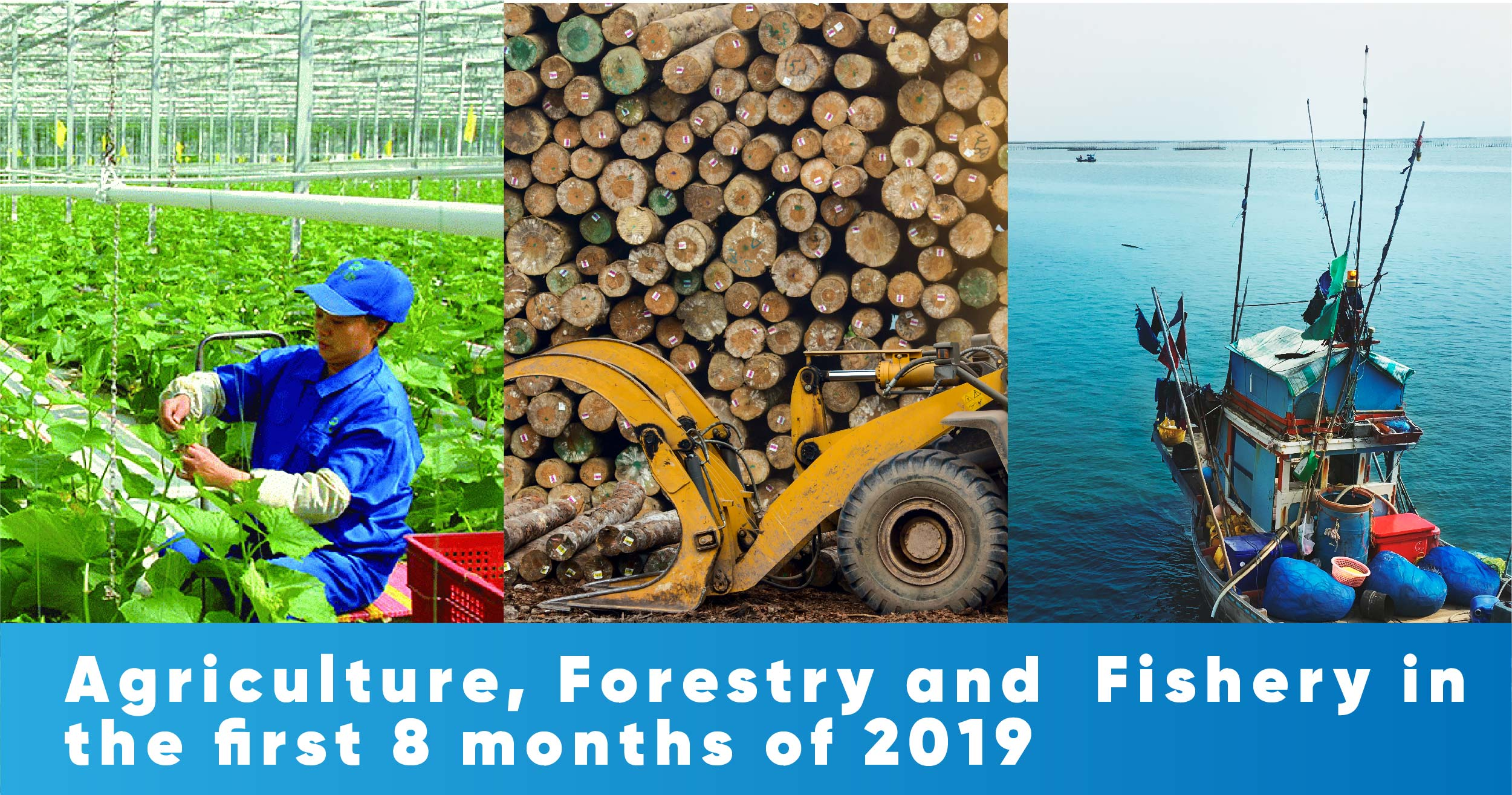 Agriculture, forestry and fishery in the first 8 months of 2019